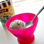 Edy's Ice Cream Brands