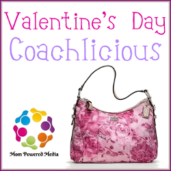 Coachlicious