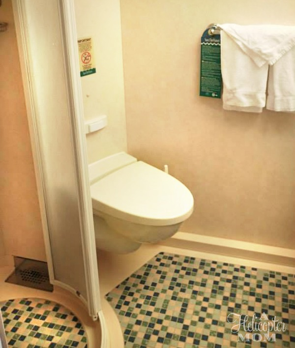 Superior Ocean View Cruise Cabin Bathroom