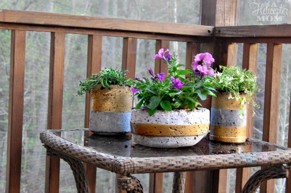 DIY Concrete Planters - Easy DIY Project