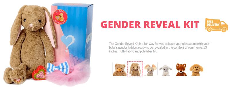 Gender Reveal Idea - Gender Reveal Kit