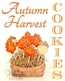 Autumn Harvest  Hand Iced Cookies