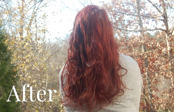 InStyler Products Hair Styling | A Helicopter Mom