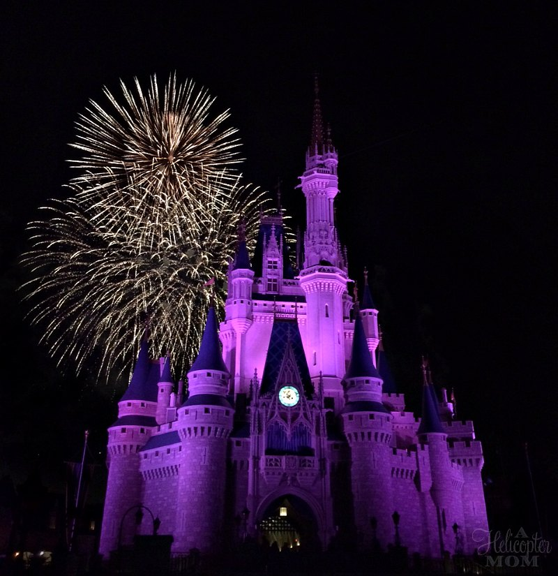 Traveling With Young Children in Orlando - Disney World