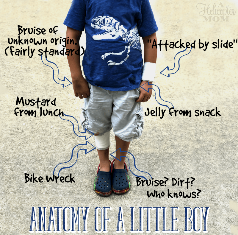 Anatomy of A Little Boy - 50 Fun Summer Activities for Kids