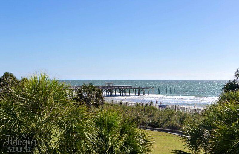 Beach Getaway Palm Trees and Sand