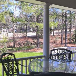 Spring Lawn Care - Back Yard and Porch