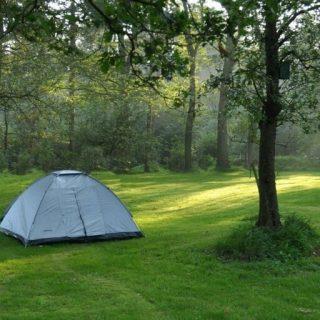 Backyard Camping Checklist – Free Printable